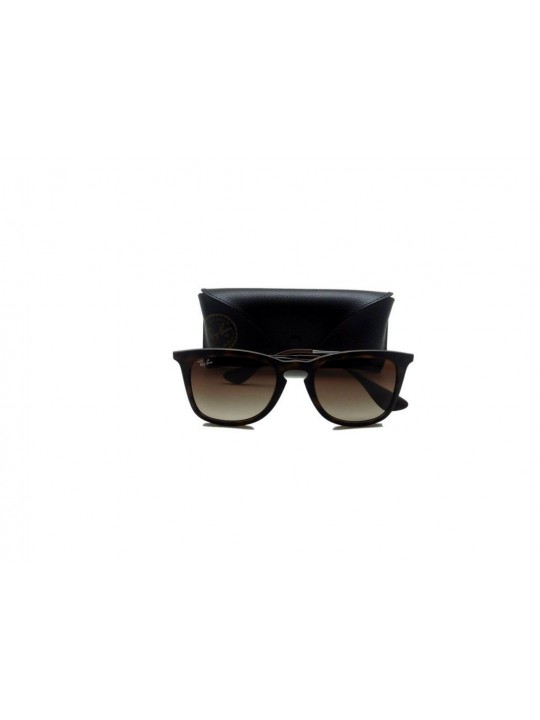RayBan RB 4221 865/13 3N Cat Eye Brown Full Frame With Rich Plastic